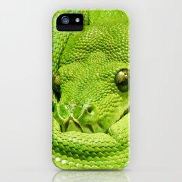 Green Tree Python iPhone Case