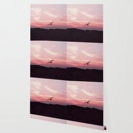 the dive Wallpaper