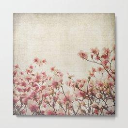 Vintage-Inspired Pink Magnolia Metal Print