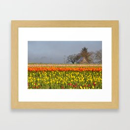 Misty tulips landscape Framed Art Print