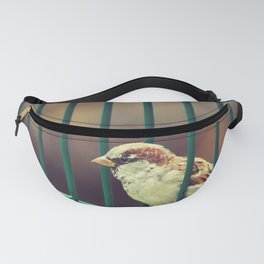 Ain't gonna lock me in Fanny Pack