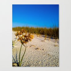 Beach Bouquet Canvas Print
