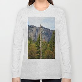 Tree In Yosemite Long Sleeve T-shirt