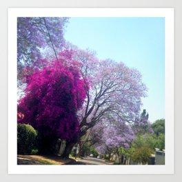 #265 #Gauteng #Summer #Colour #Palette Art Print