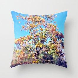 Autumn Lone Tree Throw Pillow