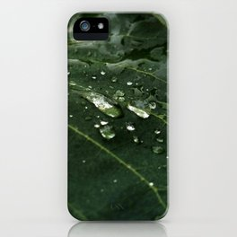 Greenery and leaf IV iPhone Case