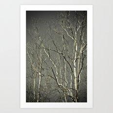 Tree #1 Art Print