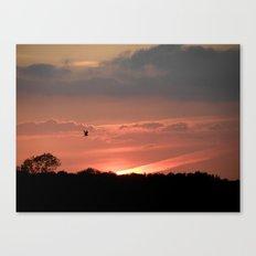 A Bird at Sunset Canvas Print