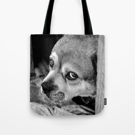 I'm Just a Dog, Don't Hurt Me!  Tote Bag
