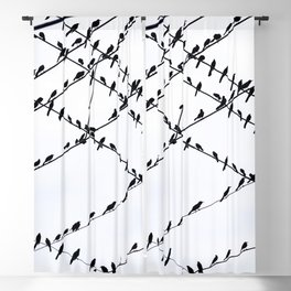 The Grackles Blackout Curtain