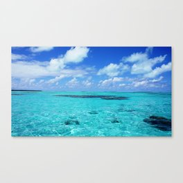 Crystal Waters Canvas Print