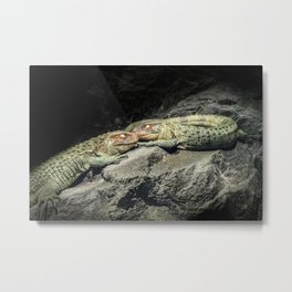 Dreaming Deep Metal Print
