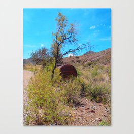 Hike Canvas Print