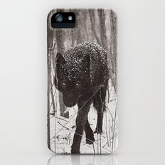 Snow Wolf iPhone (5, 5s) Slim Case