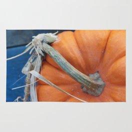 Blue Pumpkin Rug