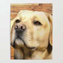 A Labrador. (Painting) Poster