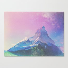 GINSENG Canvas Print