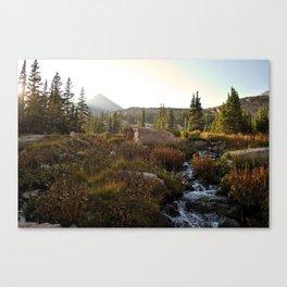Lion Lake Canvas Print