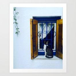 a friendly neighborhood cat Art Print