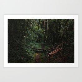Mantiqueira Trail nº 2 Art Print