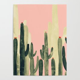 pink cactus Poster