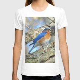 Bluebird in Tree T-shirt