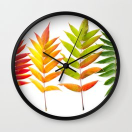 Rainbow Sumac for Autumn in Canada Wall Clock