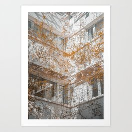 Florals on Buidings Art Print