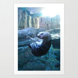 Through Glass :: Otter Art Print