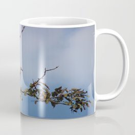Observant Vultures Coffee Mug