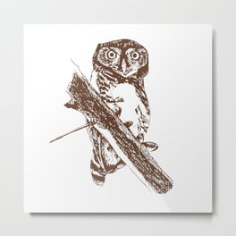 Forest Owlet Metal Print
