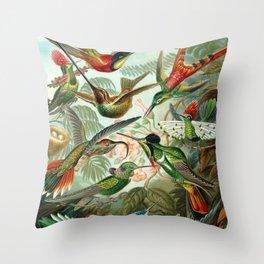 Haeckel Trochilidae Throw Pillow