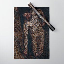 Figure Wrapping Paper