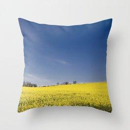 Brest Fields Throw Pillow