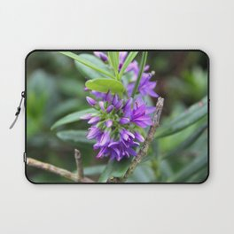 Purple Paradise Laptop Sleeve