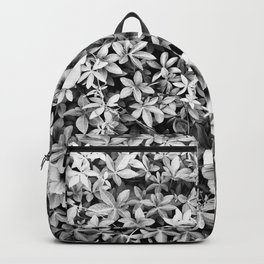 Graphic Tropical Vine  Backpack