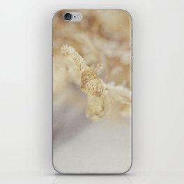 winter hydrangea iPhone Skin