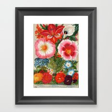 Mayflower mix Framed Art Print