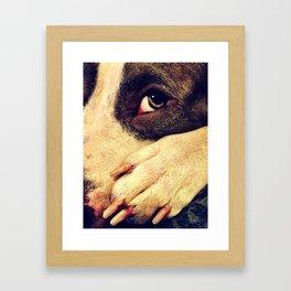 Pitbull profile Framed Art Print