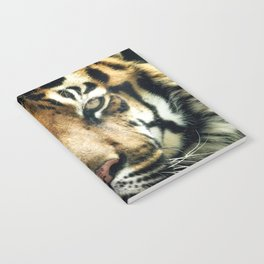 Face of Tiger Notebook