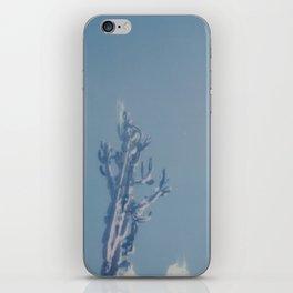 Catalina Cactus iPhone Skin