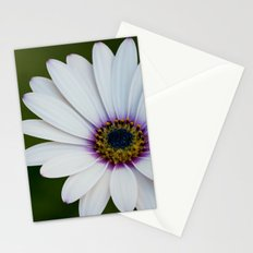 Blue Eyed Daisy Stationery Cards