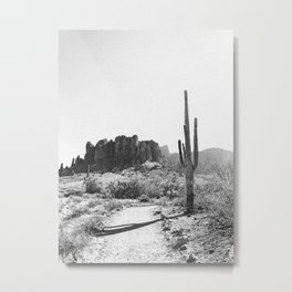 Arizona Desert Metal Print
