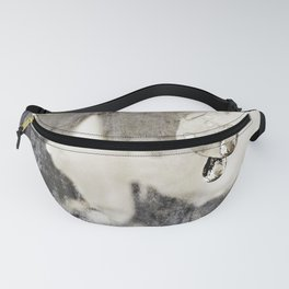 clarity Fanny Pack