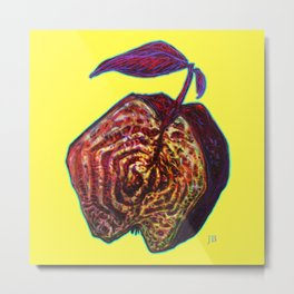 Late fruit Metal Print