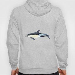 Common dolphin (Delphinus delphis) Hoody