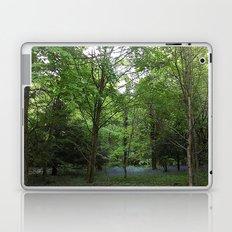 Bluebell Wood Laptop & iPad Skin