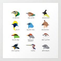 Montane Birds Series 1 Art Print