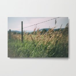 South Dakota Field 2 Metal Print