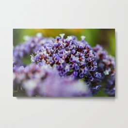 Purple posy Metal Print